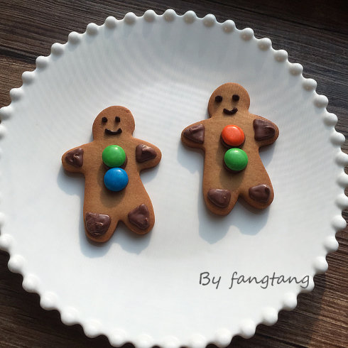 Christmas biscuit1