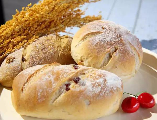 bread dough making mixer